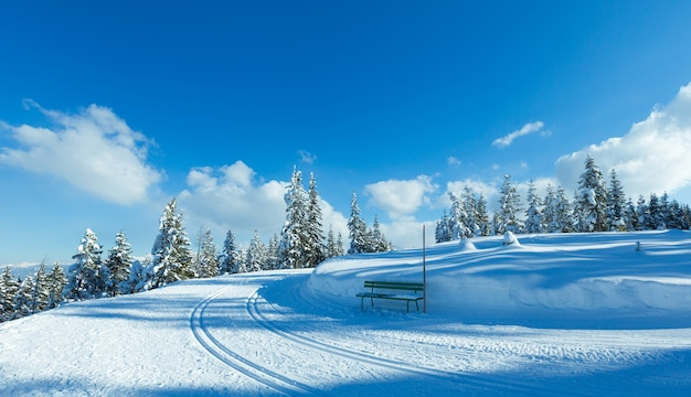 Paisagem de inverno de floresta de abetos com neve e pista de esqui e banco (topo de papageno bahn - filzmoos, áustria)