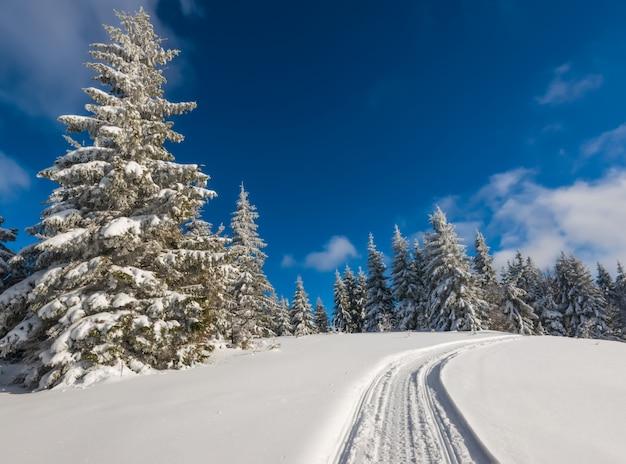 Paisagem de inverno deslumbrante e pitoresca