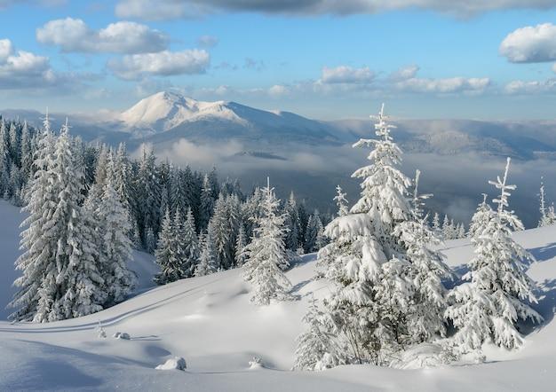 Paisagem de inverno em um dia ensolarado com árvores nevadas nas montanhas após uma nevasca