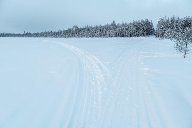 Paisagem de inverno. estrada de inverno através de uma floresta coberta de neve