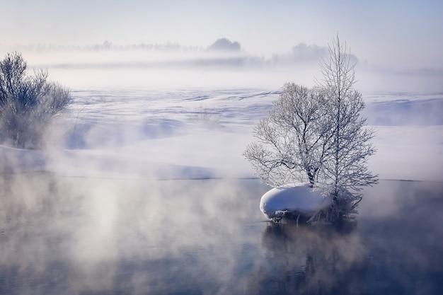 Paisagem de inverno fabulosa no rio. névoa. árvores em uma pequena ilha no meio do rio. paisagem de manhã.