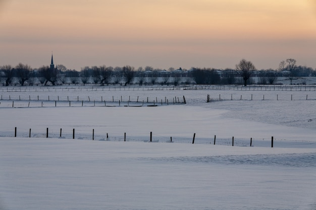 Paisagem de inverno hipnotizante coberta de neve fofa na holanda
