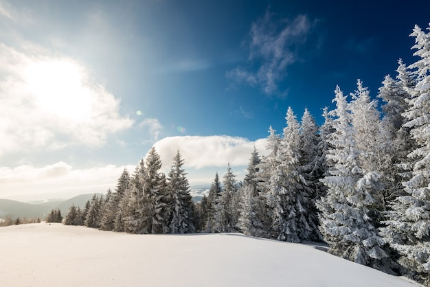 Paisagem de inverno hipnotizante com uma encosta nevada e árvores crescendo contra um céu azul e nuvens brancas em um dia ensolarado de inverno gelado