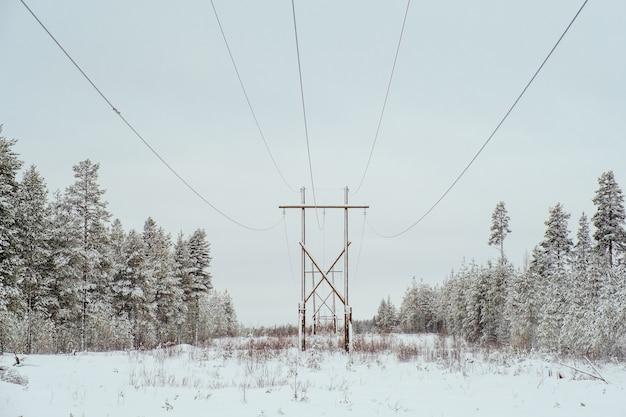Paisagem de inverno linhas de energia em um campo nevado perto da floresta