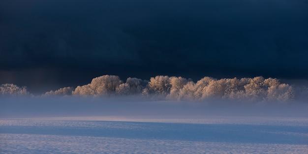 Paisagem de inverno manhã em krimulda, letónia