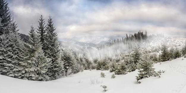 Paisagem de inverno muito bonita com floresta de neve e nevoeiro