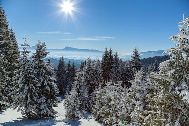 Paisagem de inverno na estação de esqui de bukovel