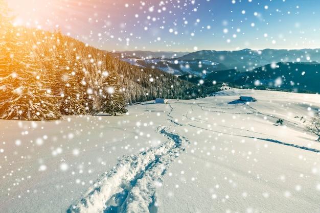 Paisagem de inverno natal ao amanhecer. caminho da trilha da pegada humana na neve profunda branca cristalina através do campo vazio, cordilheira escura arborizada, grandes flocos de neve no fundo do espaço da cópia do céu azul claro.