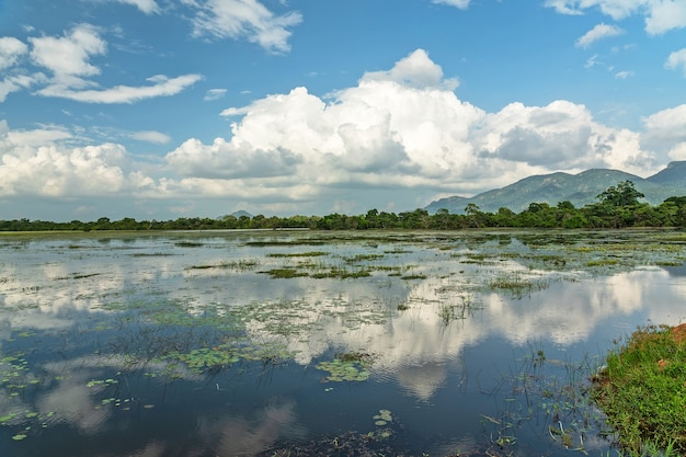 Paisagem de lago com reflexo de céu nublado, sri lanka Foto Premium