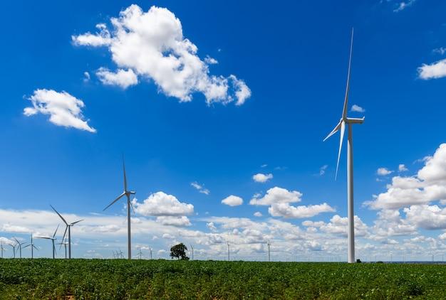 Paisagem de moinhos de vento e céu azul