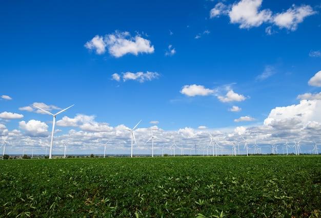 Paisagem de moinhos de vento para produção de energia elétrica no campo de mandioca