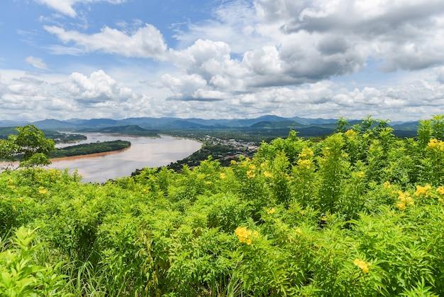 Paisagem de montanha com árvores e rio