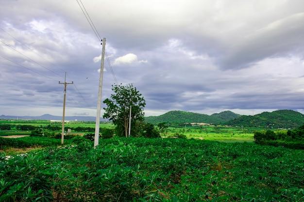 Paisagem de montanha com natureza verde, conceito de energia amigável com o meio ambiente, sistema de pilões de distribuição de energia para comunidade rural e campo