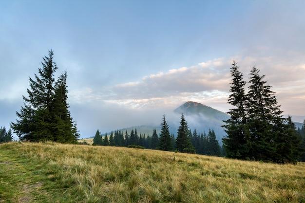 Paisagem de montanha em bom tempo ensolarado. vista do vale gramado verde da montanha alta coberta com nuvens nevoentas brancas. beleza da natureza, turismo, viagens e conceito de preservação do meio ambiente.