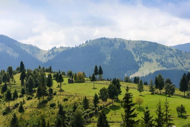 Paisagem de montanha em bucovina com campos verdes