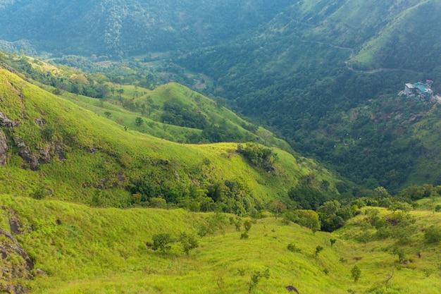Paisagem de montanha, encostas verdes. beleza das montanhas. pequeno pico de adam, montanha na névoa vista da selva