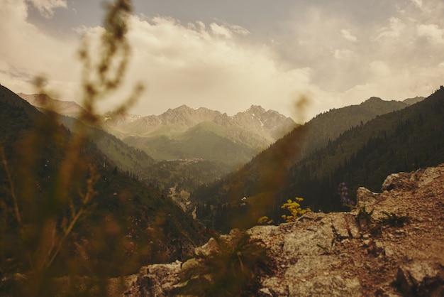 Paisagem de montanha verde verão no cazaquistão almaty, natureza, floresta e céu