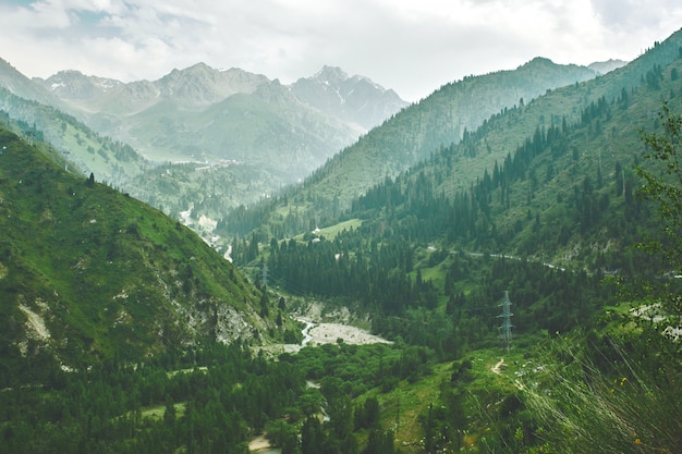 Paisagem de montanha verde verão no cazaquistão almaty, natureza, floresta, rio e céu