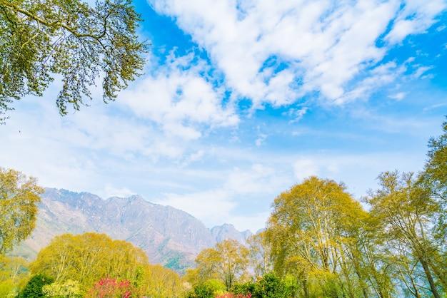 Paisagem de montanhas bonitas, estado de caxemira, índia.