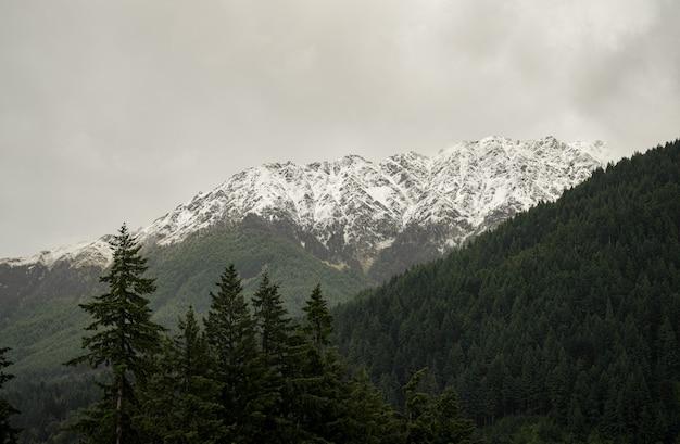 Paisagem de montanhas cobertas de florestas e neve sob um céu nublado