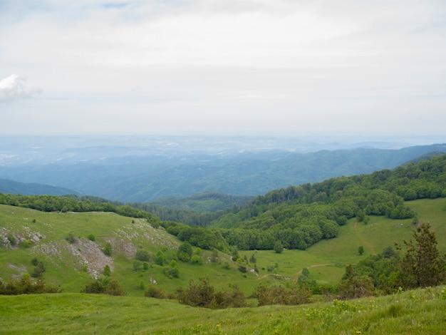 Paisagem de montanhas com céu nublado e floresta verde.