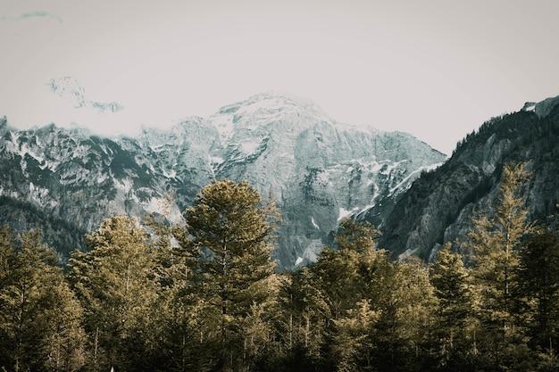 Paisagem de montanhas rochosas cobertas de neve cercada por árvores sob um céu nublado