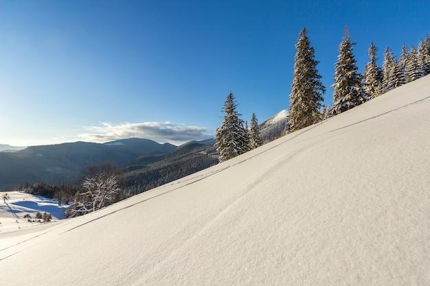 Paisagem de natal de inverno do vale da montanha em dia ensolarado gelado. coberto de pinheiros altos de geada na neve profunda, montanha escura e arborizada