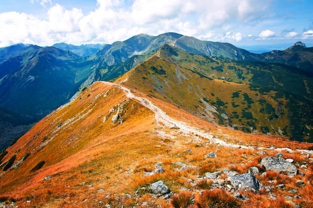 Paisagem de natureza fantastica e colorida. carpathia.