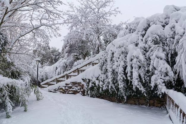 Paisagem de neve em um parque em madrid devido à tempestade de neve filomena. espanha