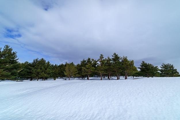Paisagem de neve na montanha de madrid com sol, céu azul e alta montanha. espanha.