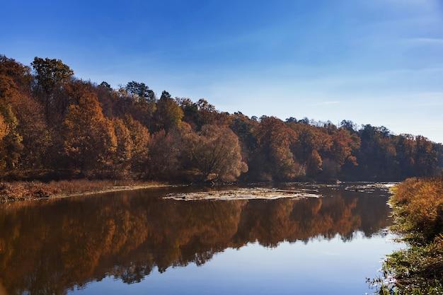 Paisagem de outono. árvores ao longo de um rio calmo com reflexo na água.