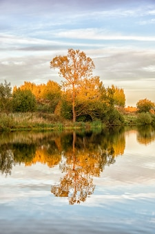 Paisagem de outono com água, árvores coloridas.