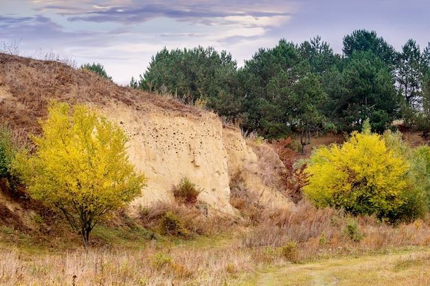 Paisagem de outono com árvores amarelas perto da rocha