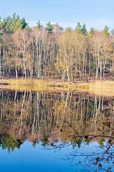 Paisagem de outono com lago calmo
