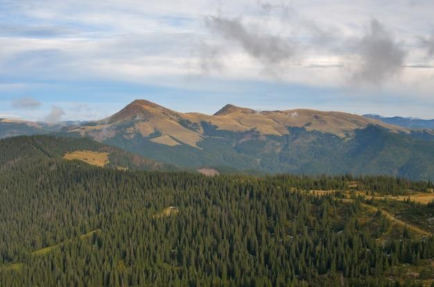 Paisagem de outono com montanhas e florestas de pinheiros,