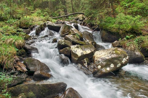 Paisagem de outono com rio de montanha fluindo entre florestas coloridas. bela cascata de pequenas cachoeiras. fluxo na madeira.