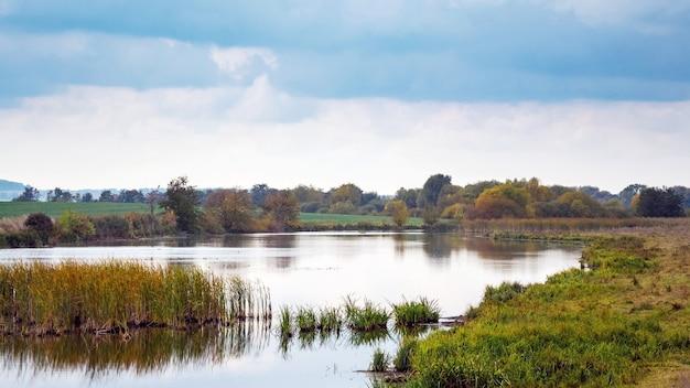 Paisagem de outono com rio e juncos