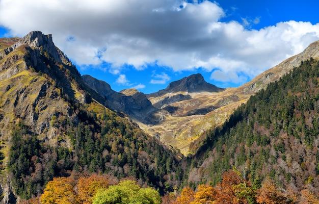 Paisagem de outono de montanha com floresta colorida