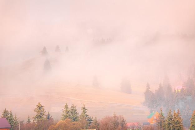 Paisagem de outono nevoenta