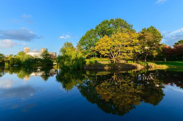 Paisagem de outono no parque nakajima,