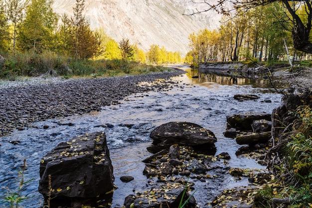Paisagem de outono no vale do rio chulyshman. distrito de ulagansky, república de altai, rússia