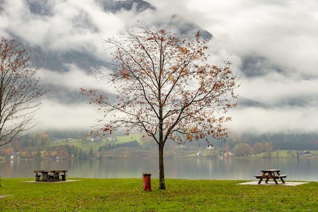 Paisagem de outono temperamental com árvores nuas e bancos na margem do lago de montanha.