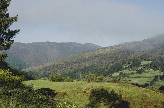 Paisagem de prados e colinas.