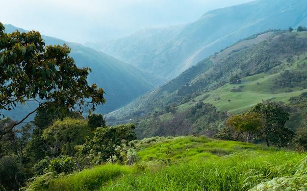 Paisagem de prados, montanhas e árvores na colômbia.