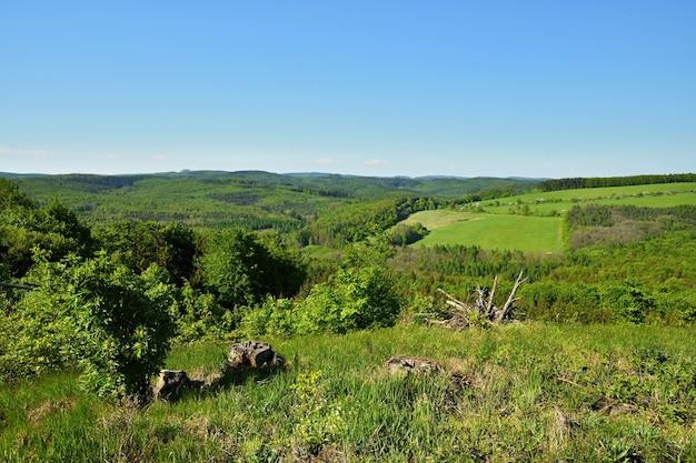 Paisagem de primavera na república checa. europa. floresta e céu azul.