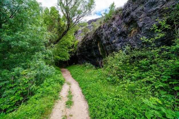 Paisagem de primavera verde com árvores altas e paredes de pedra com um caminho de terra entre a vegetação. rio duratãƒâ³n, sepulveda, segovia. espanha.