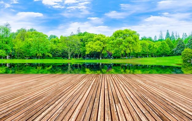 Paisagem de produtos naturais floresta floresta sol