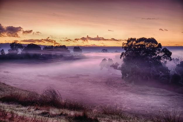 Paisagem de um campo coberto de grama e névoa sob a luz do sol durante um pôr do sol de tirar o fôlego