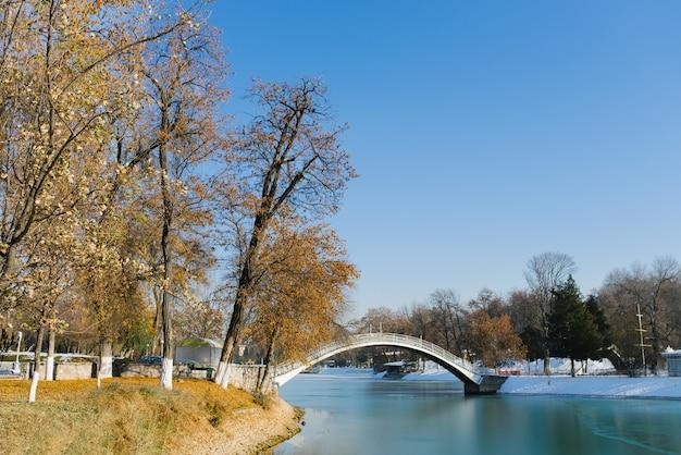 Paisagem de um parque com lago no inverno