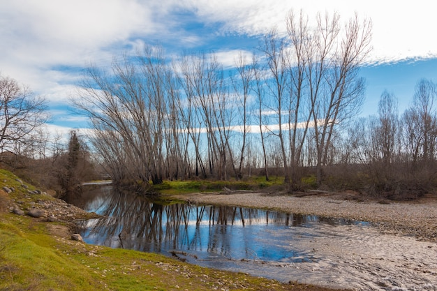 Paisagem de um rio em um dia nublado com reflexo das árvores na água.